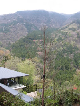 室内から 箱根の美しい景色