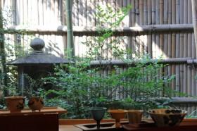 日本料理『嵯峨』